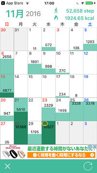 Podometer_daily.jpg